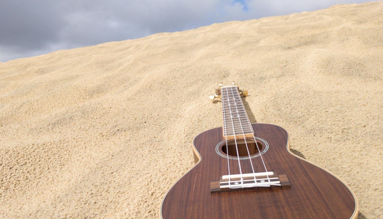 Music Desert